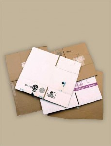 Cardboard_CustText