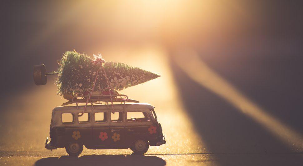 zero-waste holiday tips
