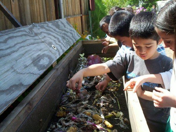 organics compost program