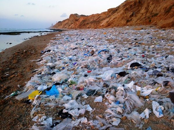 pollution, single use plastic, grocery bags