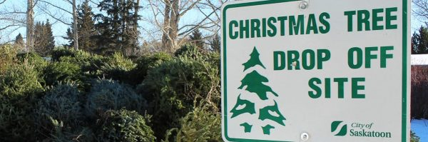 Christmas tree recycling program, Christmas tree disposal, throw out Christmas tree