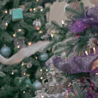 christmas tree recycling program, old tree, how to