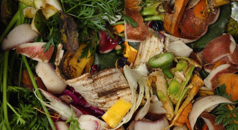 green bin, compost bin, composting