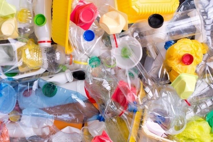 plastics, green bin, compost bin