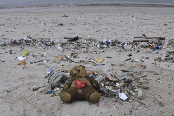 how recycling can help endangered species